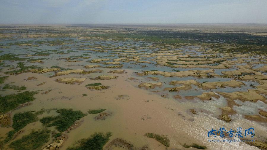 黄河凌水引进库布其沙漠,沙海变绿洲
